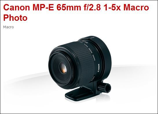 CANON MP-E 65 2.8